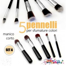 Set 5 pennelli assortiti, setola morbida, manico corto - Set A